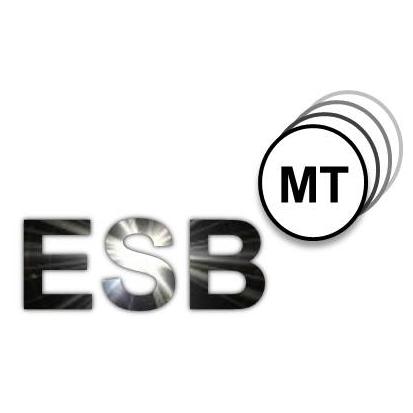 esbmt_logo-quadratisch